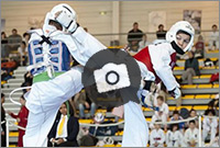 Galeries photo des clubs de taekwondo de Poitiers et Mirebeau (86 - Poitou-Charentes)